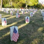Veterans' Day flags at Fairview Cemetery